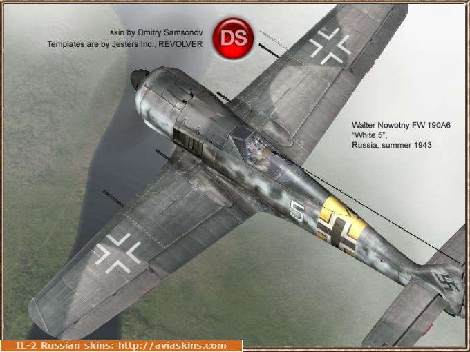 FW190AA by Walter Nowotny