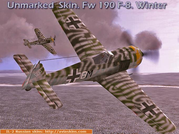 Unmarked  Skin. Fw 190 F-8. Winter